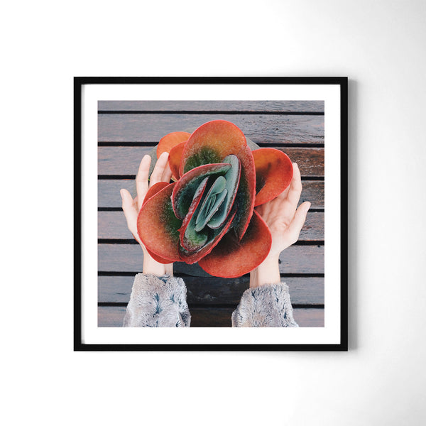 Take It - Art Prints by Post Collective - 2