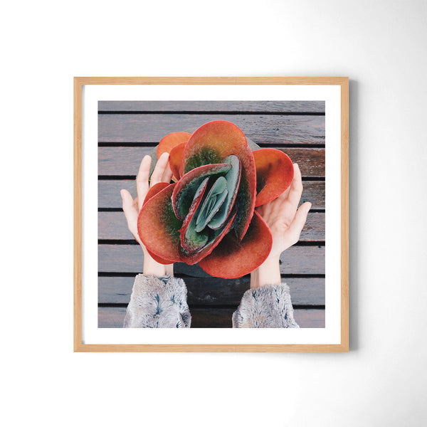 Take It - Art Prints by Post Collective - 3
