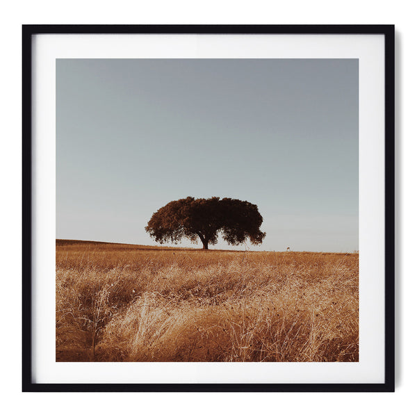 This Warm Velvet Wind - Art Prints by Post Collective - 1