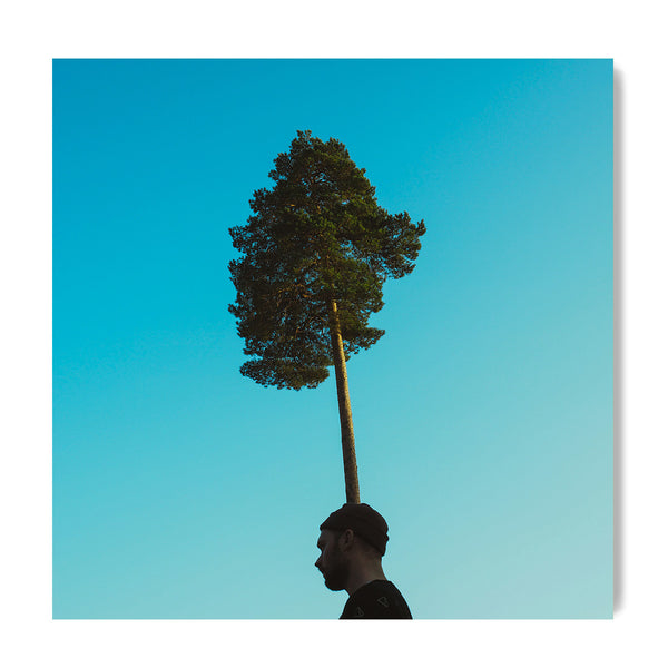 Treehat Self-Portrait - Art Prints by Post Collective - 1