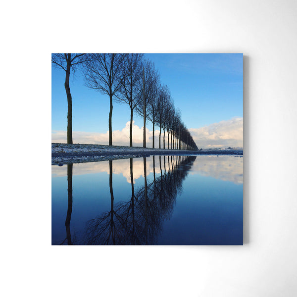 Trees Aligned - Art Prints by Post Collective - 2