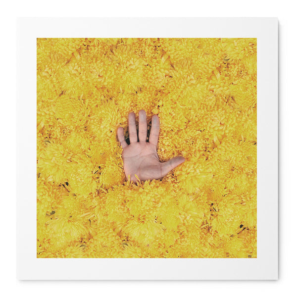 Yellow II - Art Prints by Post Collective - 1