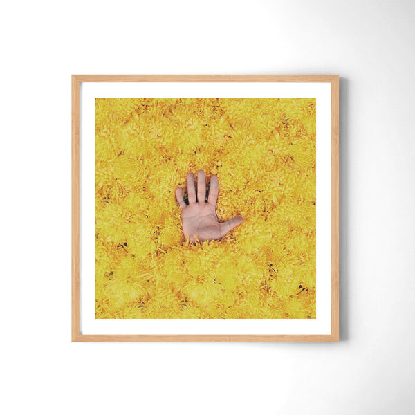 Yellow II - Art Prints by Post Collective - 3