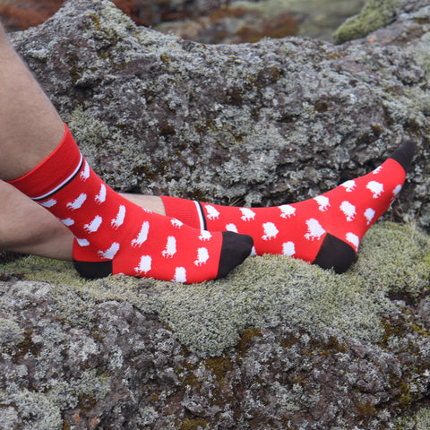 Socks - Iceland Map - Red_Black - New