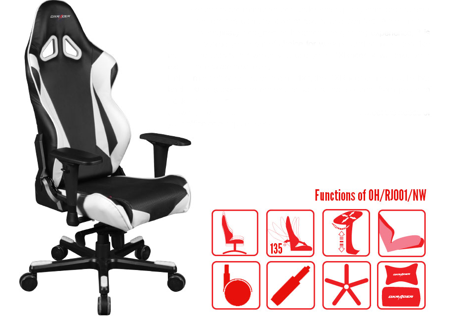 DXRACER OH/RJ001/NW Gaming Chair