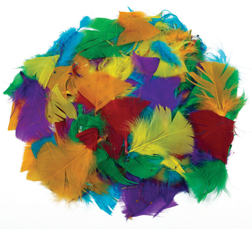 Coloured Feathers 28g