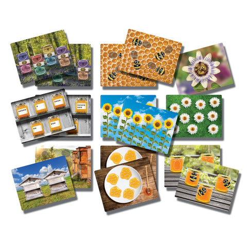 Honey-Bee-Early-Number-Cards-pk-16