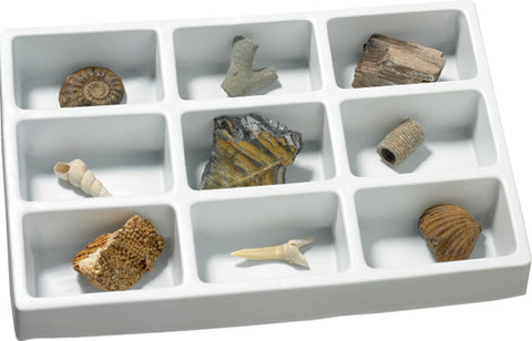 Geosafari Fossils Collection pk9