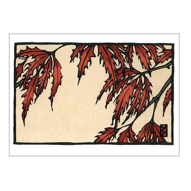 Japanese Maple Notecard Box Set