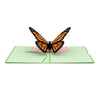 Butterfly Pop-Up Card