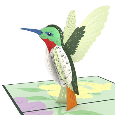 Hummingbird Pop-Up Card