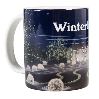 Winterlights Mug