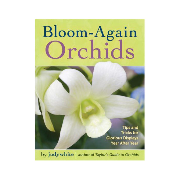 Bloom Again Orchids
