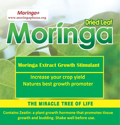 Moringa Extract Growth Stimulant 1 Litre