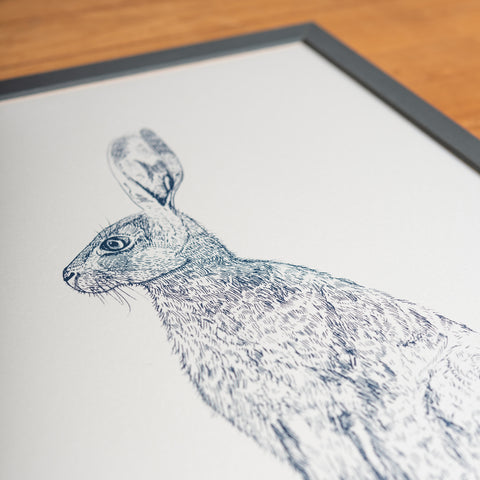 Blue Hare Framed Print