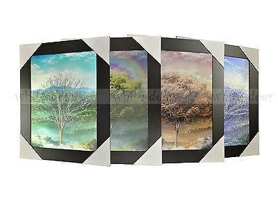 Tree Four Seasons 3D Picture PTS13