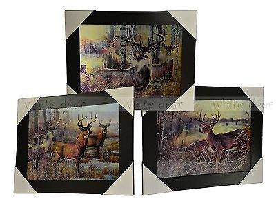 Deer 3D Picture PTD27