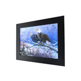 Snow Bald Eagle 3D Picture PTD15