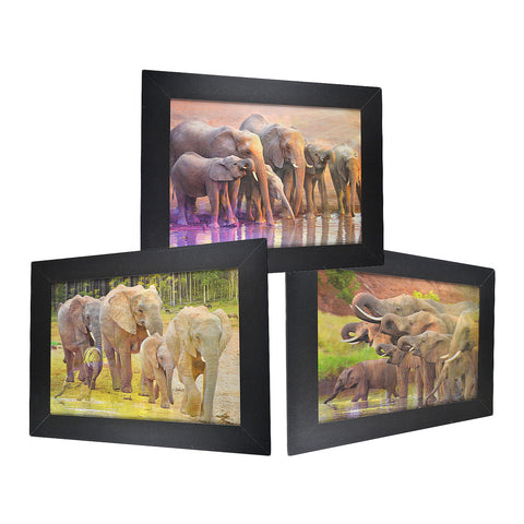 Elephant Pack 3D Picture PTD29