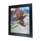 Bald Eagle 3D Picture PTD31