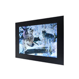Snow Wolf 3D Picture PTD35