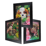 Puppy 3D Picture PTD42