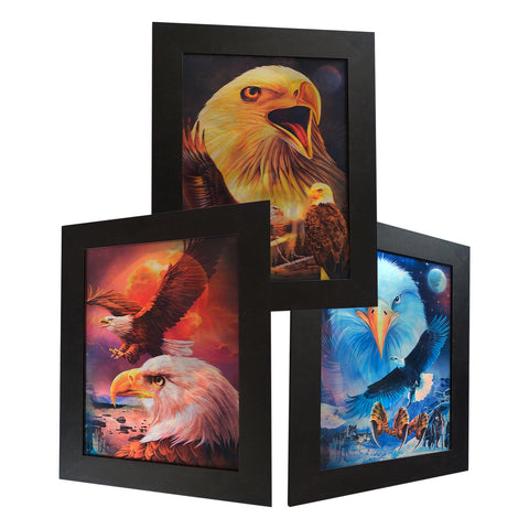 Eagle 3D Picture PTD54