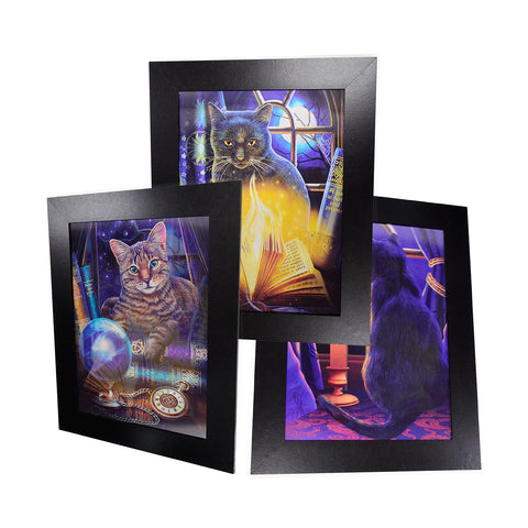 Mystic Cats 3D Picture PTD66