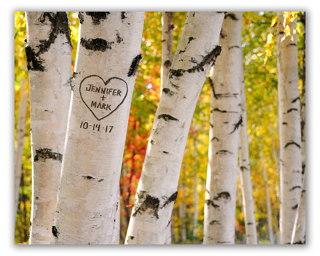 Carved Birch Tree