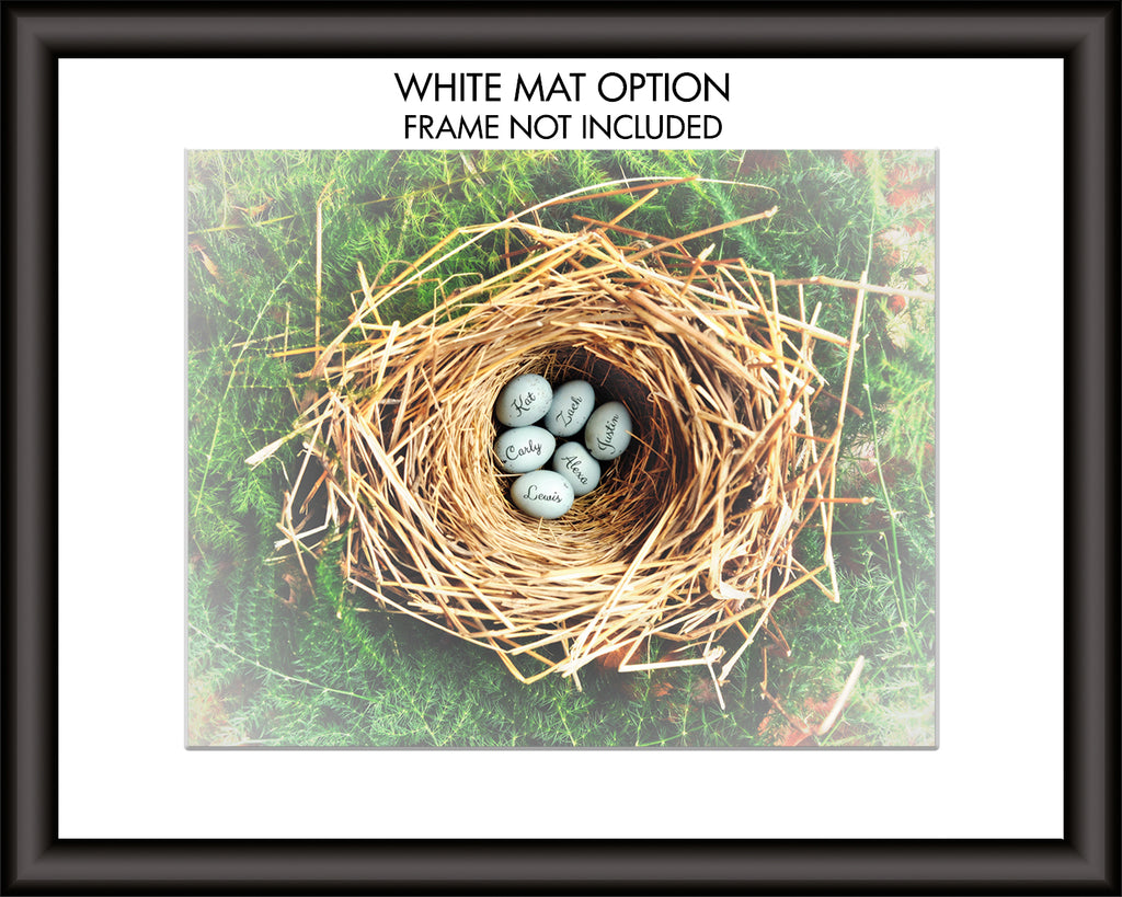 Eggs in Nest Custom Print