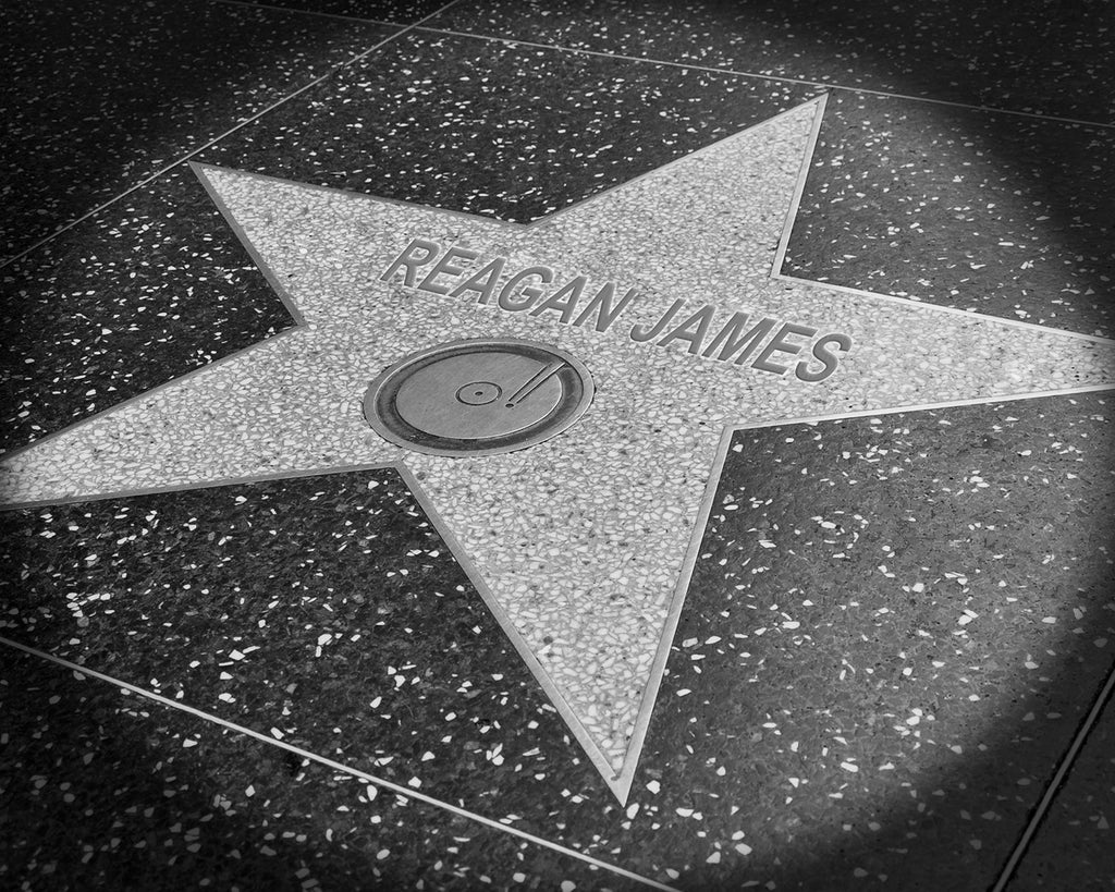 custom hollywood walk of fame star