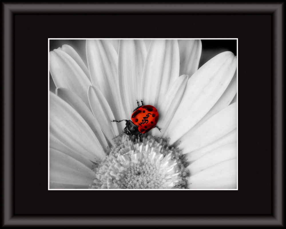 lady bug artwork