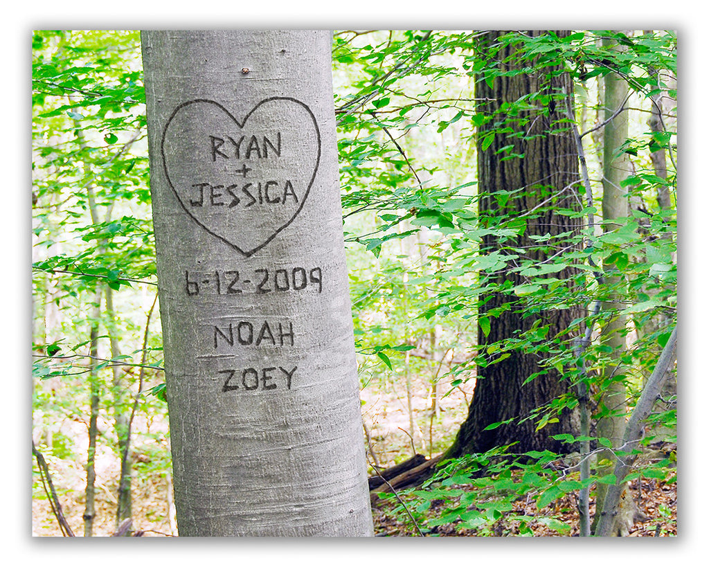 summer love tree personalized picture