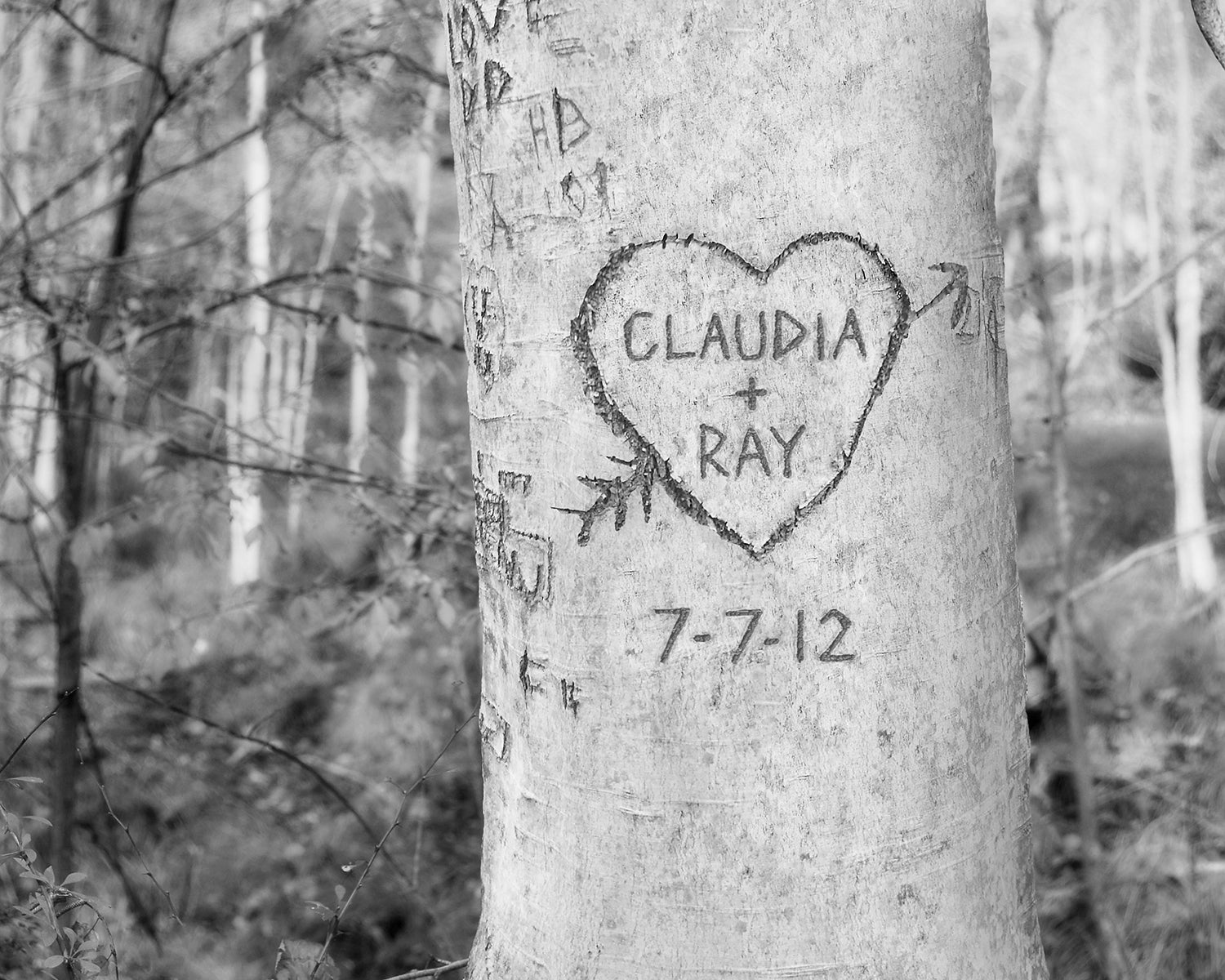 Woodland Carved Heart Tree Print