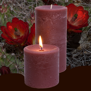 Scented Pillar Candle Cactus Flower - Candle Factory Store