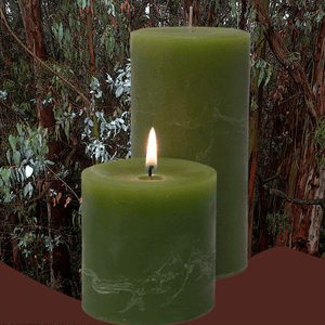 Eucalyptus Pillar Candle - Armadilla Wax Works Candle Factory Store