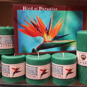 Scented Pillar candle Bird of Paradise - Candle Factory Store
