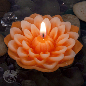 Dahlia floating candles for your garden parties! Original design made by Armadilla Wax Works since 1971.