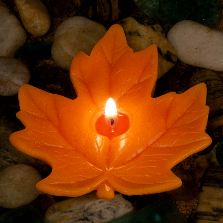 Maple Leaf 4 inch Floating Candle - Candle Factory Store