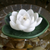 Floating Water Lily 6 inch Pool Candle - Candle Factory Store