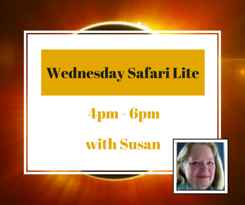 Wednesday Safari Lite