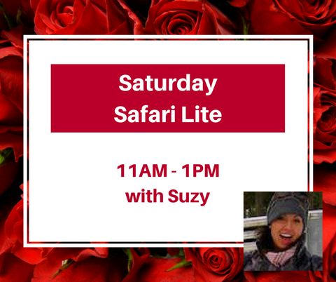 Saturday Safari Lite 11 AM-1 PM