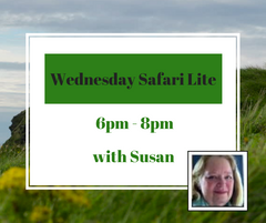 Wednesday Safari Lite 6PM - 8PM