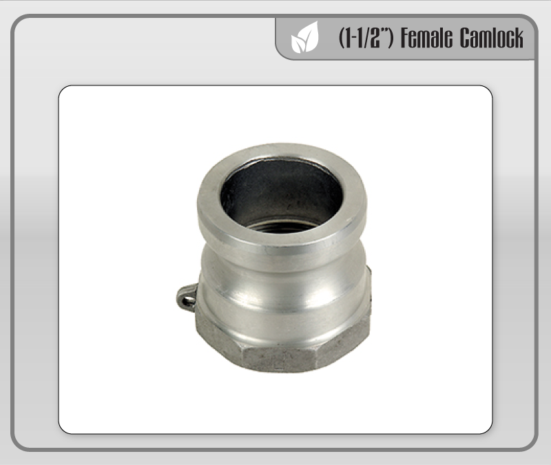 "(1-1/2"") Female Camlock Adapter"