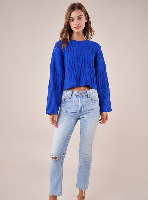 Cobalt Knit Sweater