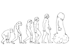 eat a bag of dicks coloring book evolution of man