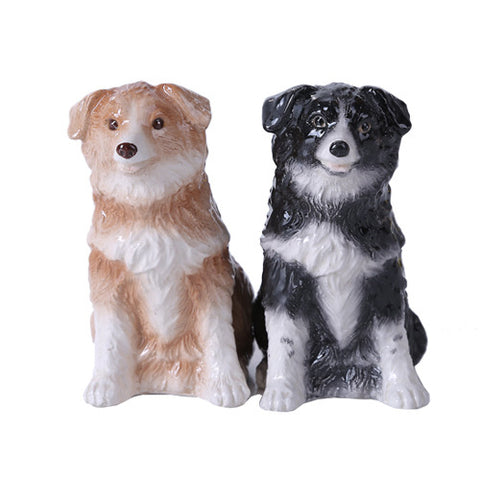 Border Collie Magnetic SP Set