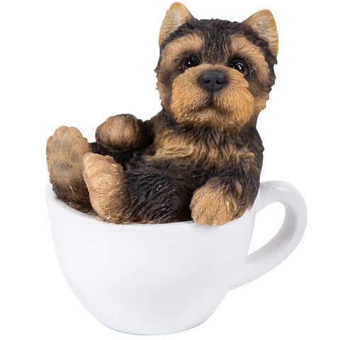 Yorkie Mini Tea Cup Pups