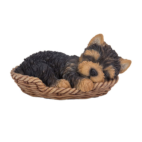 Yorkie Wicker Basket Pups