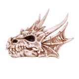 Dragon Skull Head